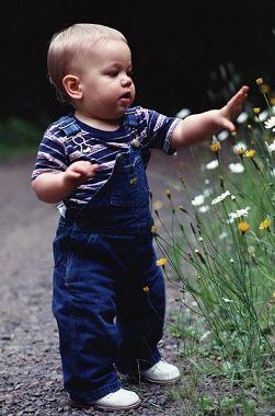 宝宝智力发育障碍的标志高清图片